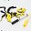 Thumbnail: BEE POLLINATORS