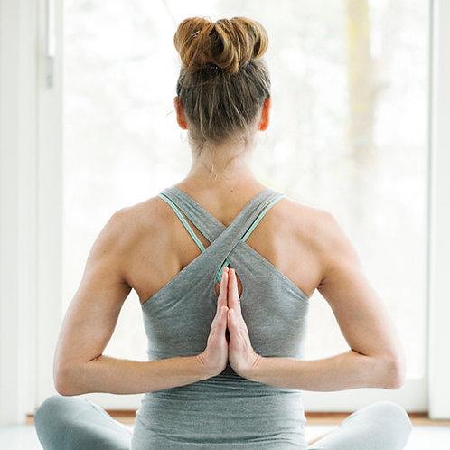 Yoga Medicine® Essentials Workshop