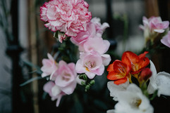 flowers capileira photo-1524303973783-fa