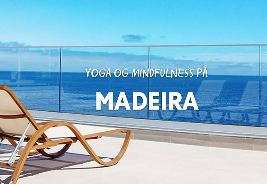 Madeira november 2021.png