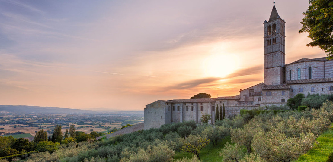 Italia-Assisi-oliven-1170x570.jpg