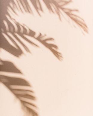 Palm Beach Travel Guide — Abby Capalbo.jpg