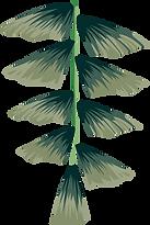 7BloomGlam_Leaves.png