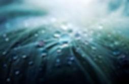 NANO4LIFE– innovative nanocoating protection for allsurfaces
