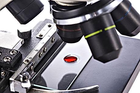 blood-under-microscope.jpg