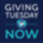 GivingTuesdayNow_Logo.png