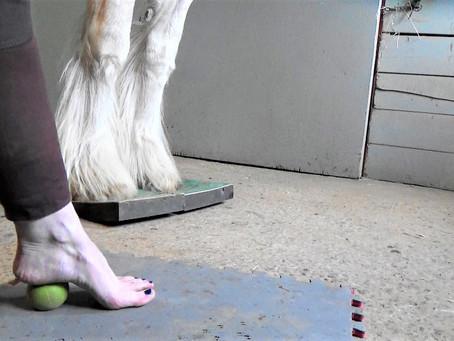 Massage des pieds avec balles thérapeutiques