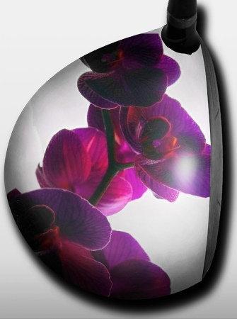 Purple Orchid White