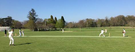 150424 Cricket