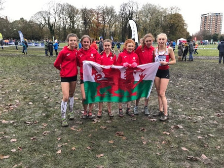 Welsh debut for two Newport Harriers