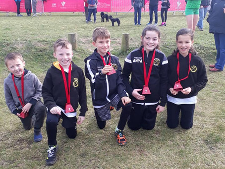 115th Welsh Cross Country Championships