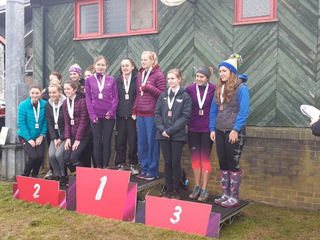 Welsh Regional Cross Country Championships