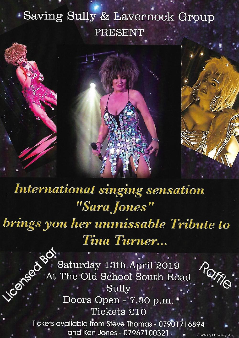 Sara Jones Poster