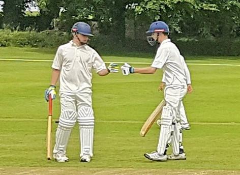 170616 Cricket3