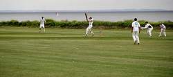 Cricket by the Sea