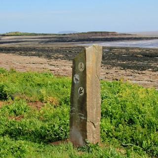 Coastal Patch Stones 3.JPG