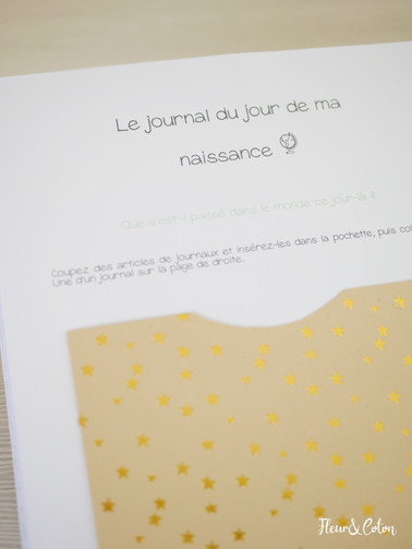 Journal de bord vert10.jpg
