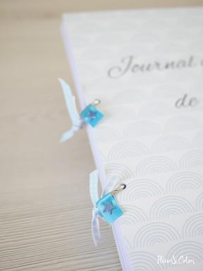 Journal de bord bleu3.jpg
