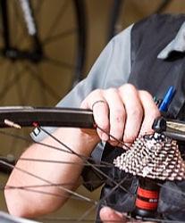 Bike%20Wheel%20Fix_edited.jpg