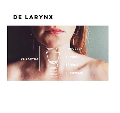 larynx - insta.JPG