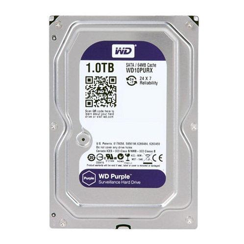 HD 1 TB Purple