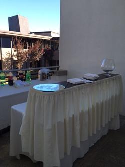 Bar on back terrace