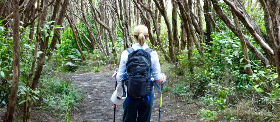Is hiking even better than yoga?