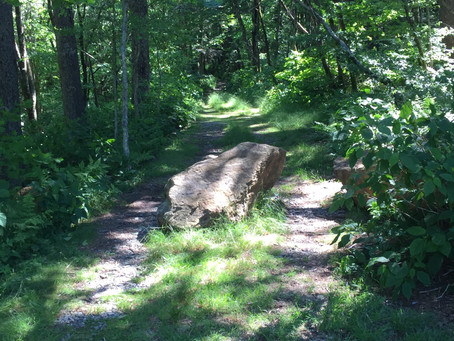Easements and the Boundary Consultant: Dedicated Highways Don't Expire due to Old Age