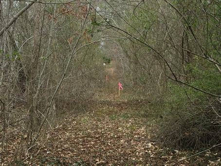 Can Sale of the Servient Tract Without Notice Extinguish a Prescriptive Easement?