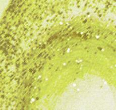 raumdesign-vliestapete