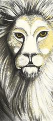 lion5e-288-300.jpg