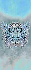 tiger2bg-144-300.jpg
