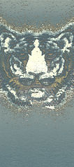 tiger2ae-spezial6b-216-300.jpg