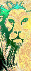 lion5ga9-300.jpg