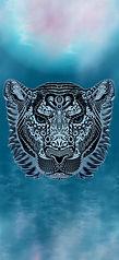tiger2bc-144-300.jpg