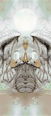 angel1b--5c-m3-300.jpg