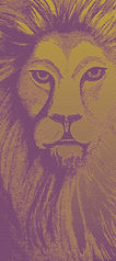 lion5-1d-300.jpg