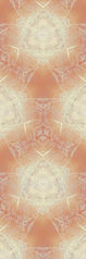 tapeten-design-kings-iceapricot-tw3strb2-a-m12-300.jpg