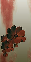 blumen-tapete-flow01d-GS-300.jpg