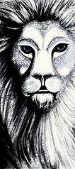 lion5c-288-300.jpg