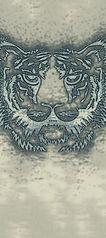 tiger2ae1-216-300.jpg