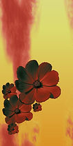 blumen-tapete-flow01b5-GS-300.jpg