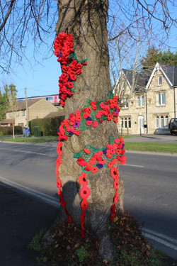 Stonehouse Remembers