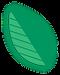 Individual Leaf.png