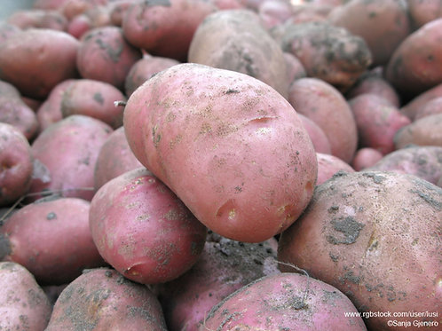 Washed Red potatoes - 2kg