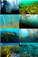 You can never know too much about kelp