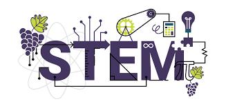 Why Study STEM?