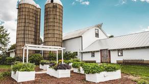 UNIQUE IN SUBURBIA | Heritage Prairie Farm