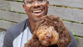 PETPLATE | Black-Owned Start-Up Dog Food Delivery Company the Latest Craze