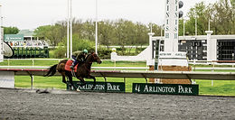 FOR SALE | Historic Arlington Park Hits the Market